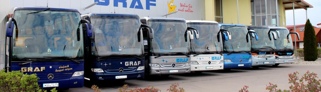 Busse neu von Sandi